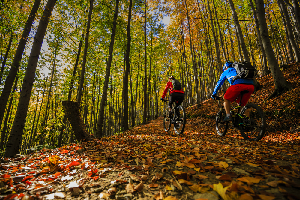 biking trails in autumn