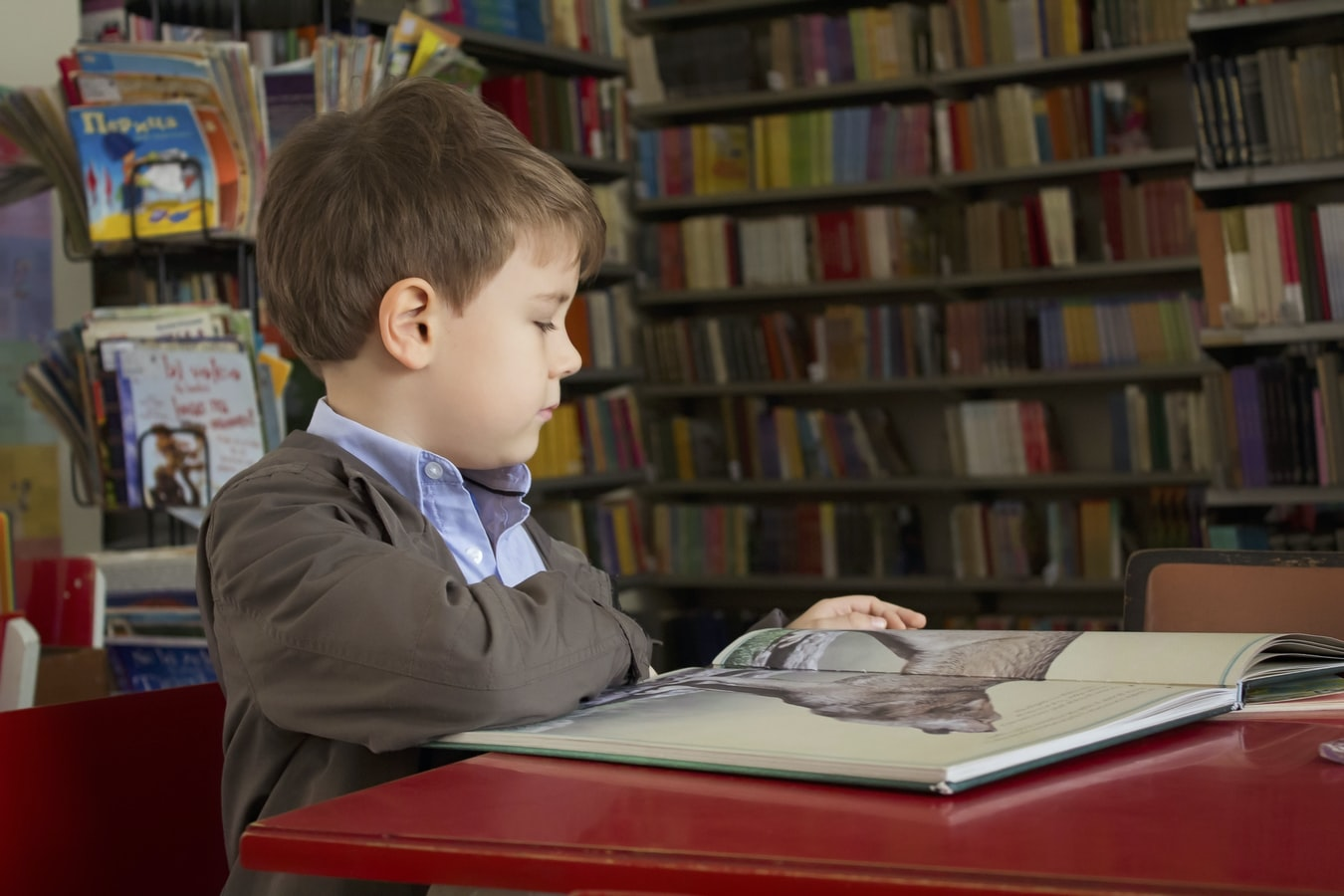 boy reading a book at a library