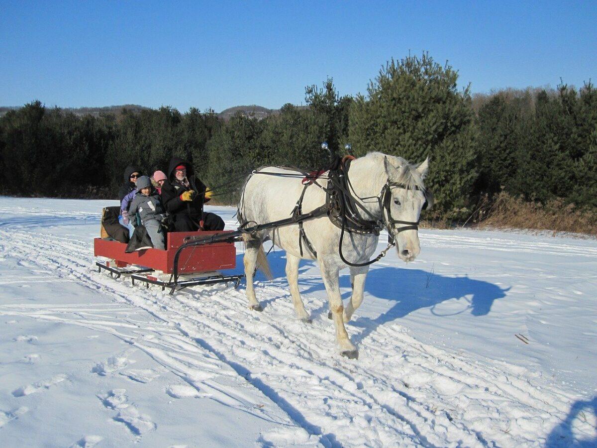 killington sleigh ride